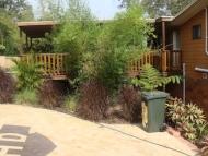 Landscaping Garden-2 After